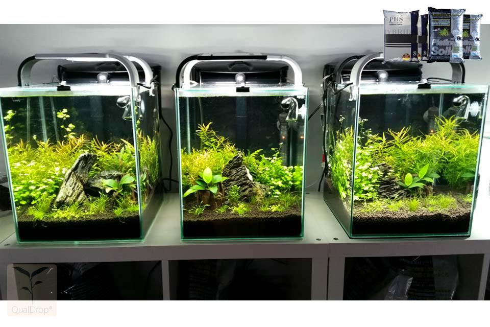 akwarium na wymiar aquael shrimp