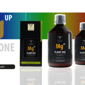 Mg Up 500 ml