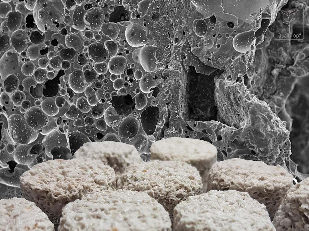 Hyper Pore, structure 01 SEM