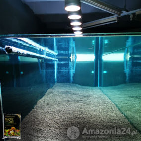 Master Soil - Tank 1000 l - 2500 cm water...
