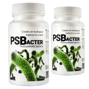 PSBacter 30 g
