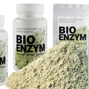 Bio Enzym