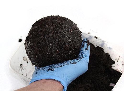 Modeling Soil...