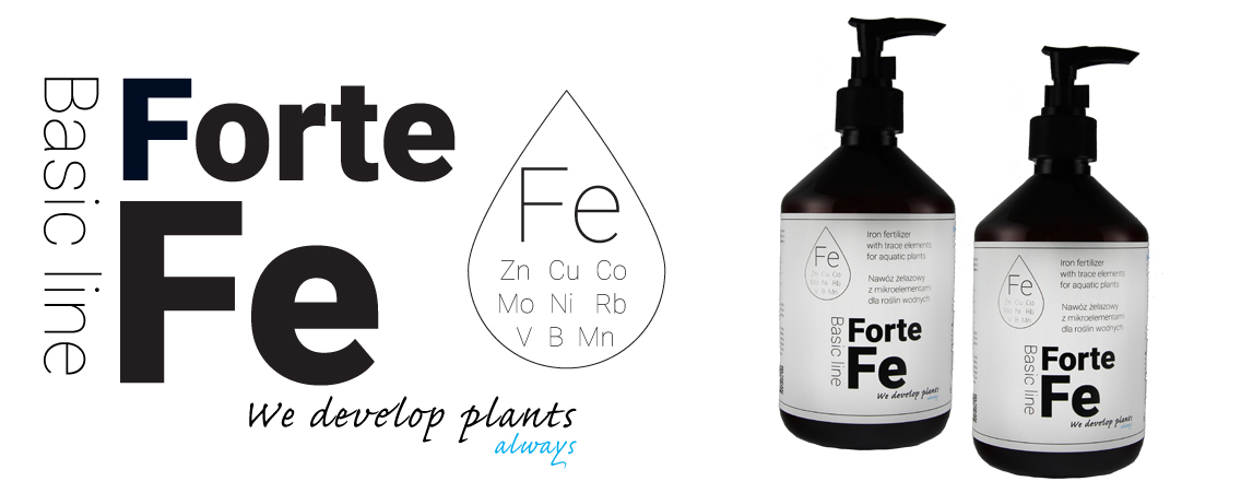 Fe Forte 500 ml