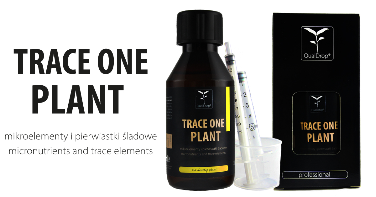 Trace Plant