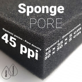 Sponge PORE